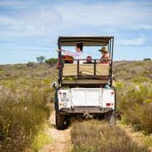 Thali Thali Game Drives